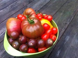 Abundant tomatoes. Finally.